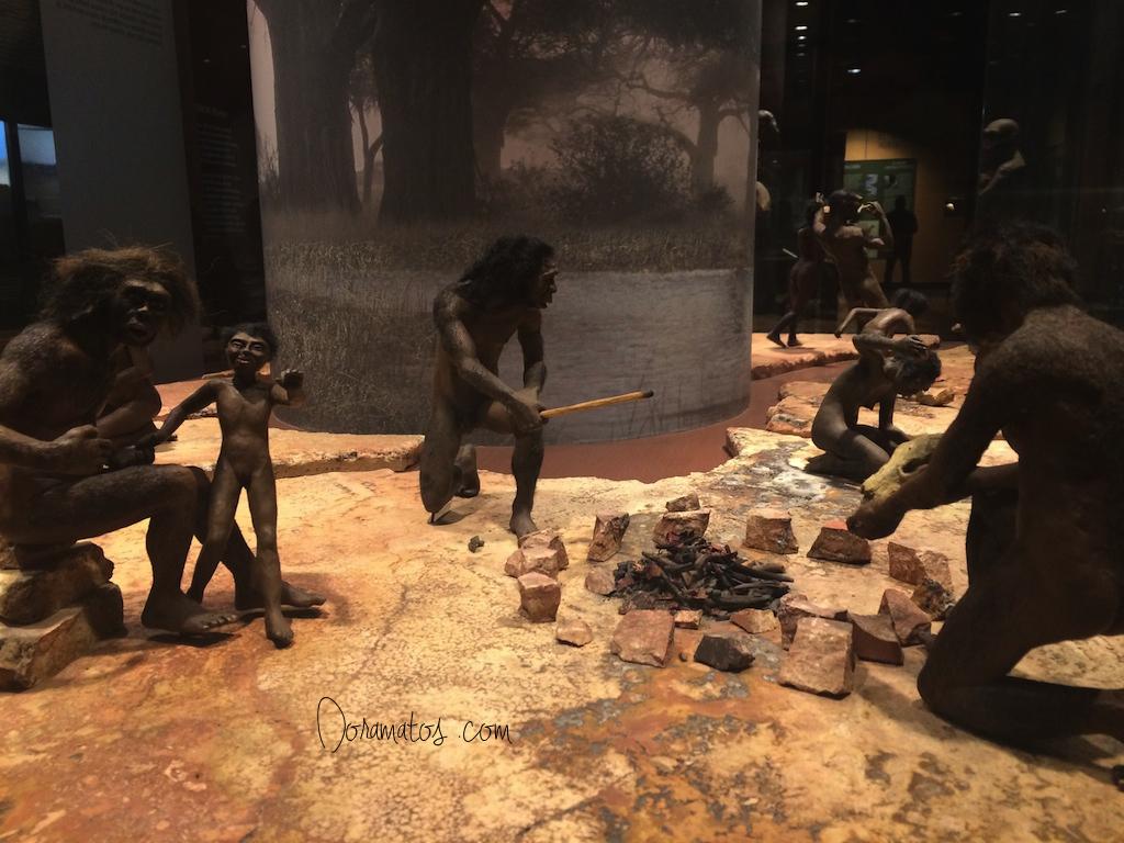 Representação da vida dos primeiros homens no mundo, no Museu Antropológico | Doramatos.com